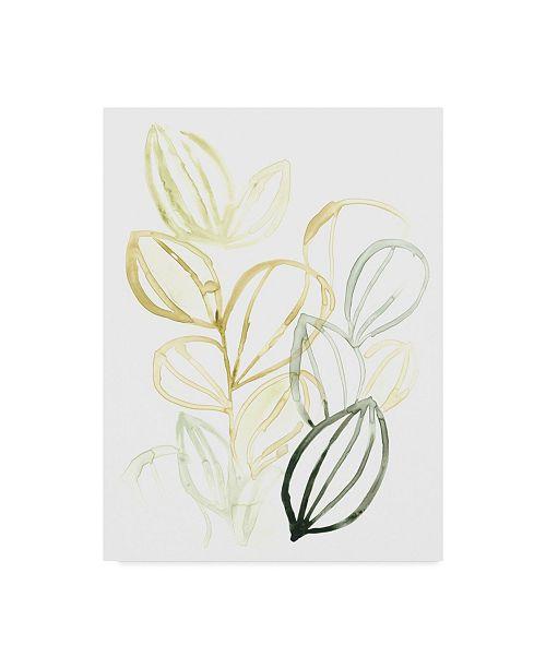 "Trademark Global June Erica Vess Seed Spectrum I Canvas Art - 15"" x 20"""