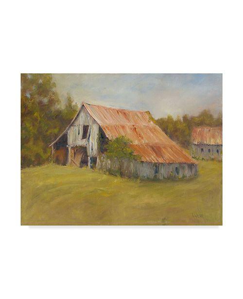 "Trademark Global Marilyn Wendling Tin Roof Canvas Art - 20"" x 25"""
