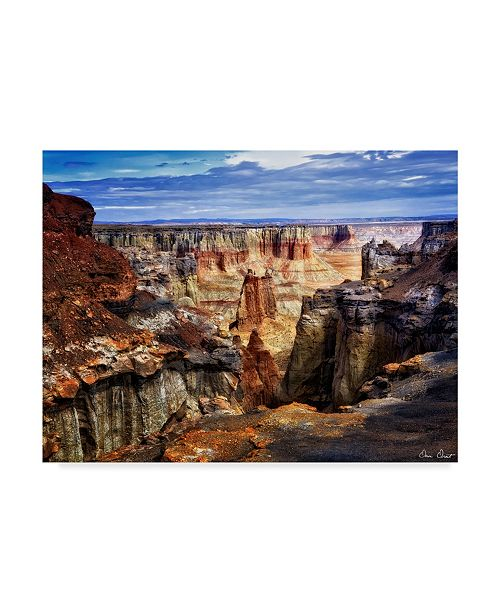 "Trademark Global David Drost Valley Beauty III Canvas Art - 20"" x 25"""