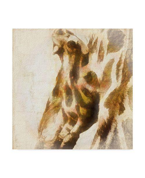 "Trademark Global Ryan Hartson-Weddle Inspektor V Canvas Art - 15"" x 20"""