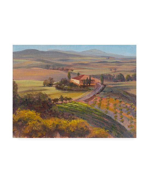 "Trademark Global Sandra Iafrate Nostalgic Tuscany I Canvas Art - 37"" x 49"""