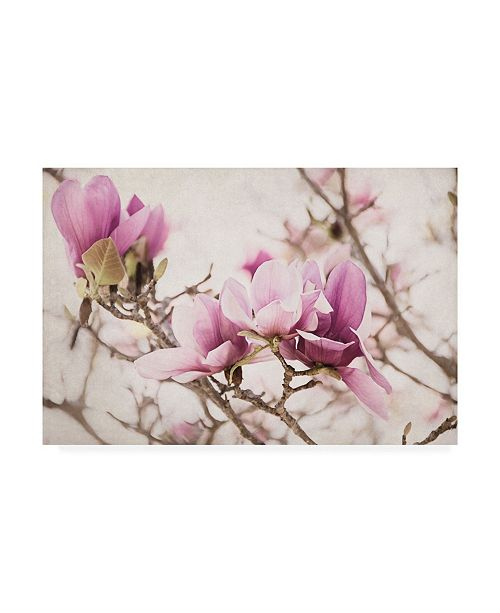 "Trademark Global Elizabeth Urquhart Spring is in the Air III Canvas Art - 20"" x 25"""