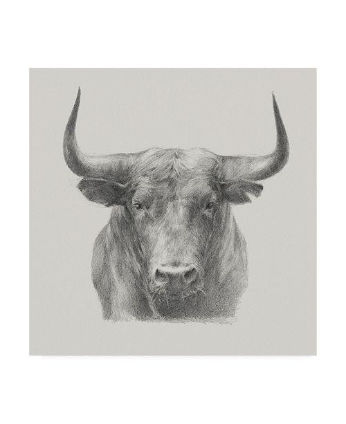 "Trademark Global Ethan Harper Black Bull Canvas Art - 15"" x 20"""