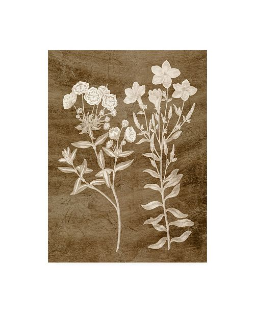 "Trademark Global Vision Studio Botanical in Taupe I Canvas Art - 15"" x 20"""