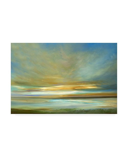 "Trademark Global Sheila Finch Light on the Dunes Canvas Art - 37"" x 49"""