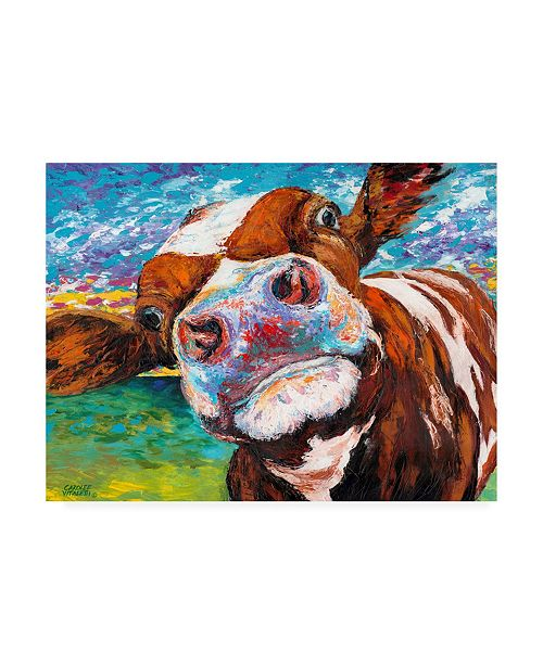 "Trademark Global Carolee Vitaletti Curious Cow I Canvas Art - 20"" x 25"""