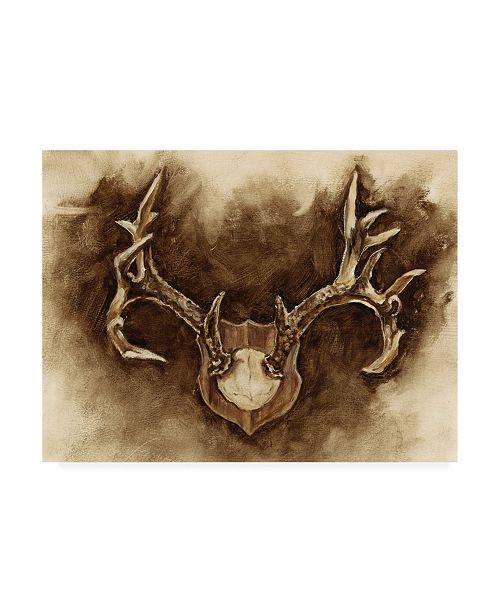"Trademark Global Ethan Harper Rustic Antler Mount I Canvas Art - 37"" x 49"""