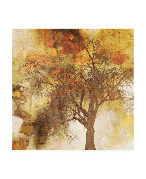 "Trademark Global Irena Orlov Autumn Colored II Canvas Art - 27"" x 33"""