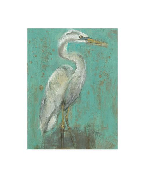 "Trademark Global Jennifer Goldberger Sea Spray Heron I Canvas Art - 37"" x 49"""