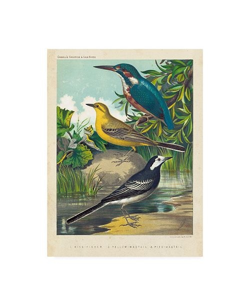 """Trademark Global Cassell King Fisher and Wagtails Canvas Art - 37"""" x 49"""""""