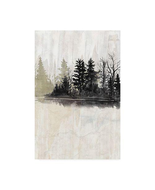 "Trademark Global Naomi Mccavitt Pine Island I Canvas Art - 20"" x 25"""