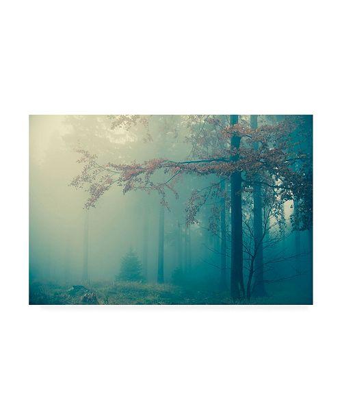 "Trademark Global PhotoINC Studio Woods Canvas Art - 19.5"" x 26"""