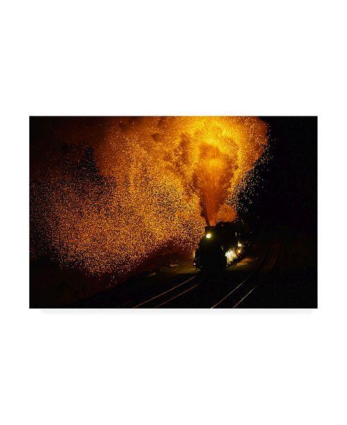 """Trademark Global Shirley Shen Fire Dragon Canvas Art - 27"""" x 33.5"""""""