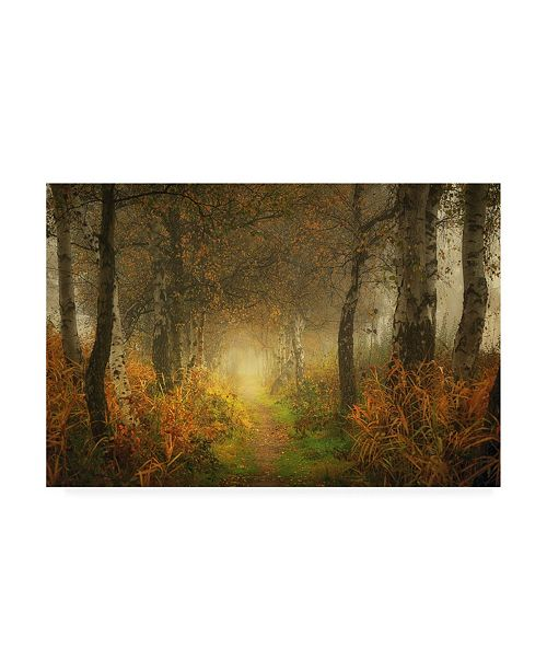 "Trademark Global Saskia Dingemans Dream Forest Canvas Art - 19.5"" x 26"""