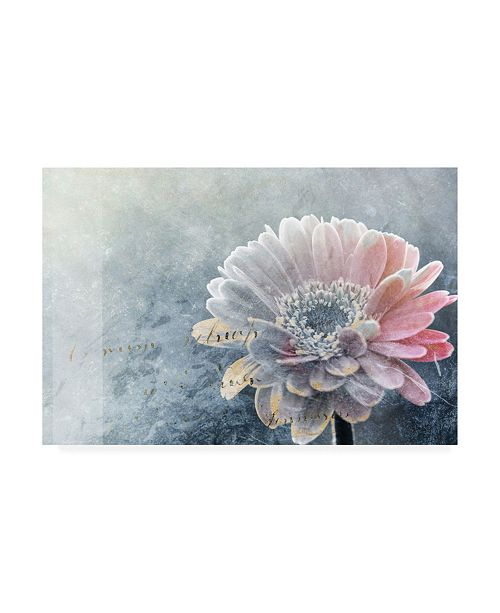 "Trademark Global Incado Winter Flower Canvas Art - 19.5"" x 26"""