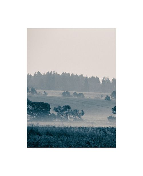 "Trademark Global PhotoINC Studio Blue Mountains III Canvas Art - 19.5"" x 26"""