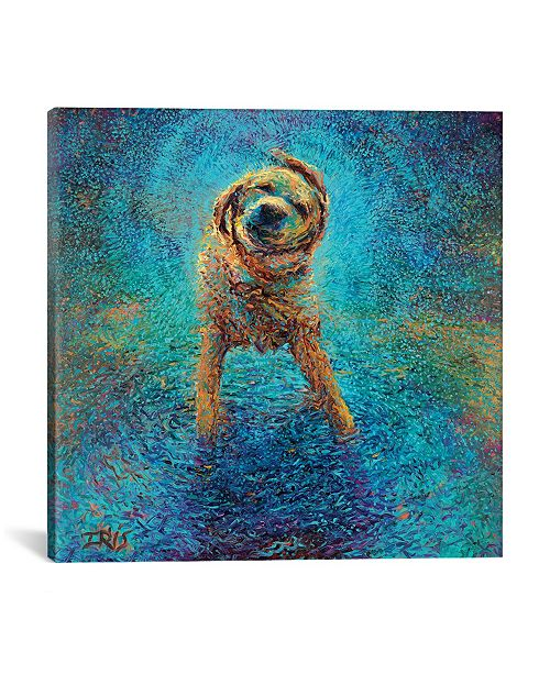 """iCanvas Shakin` Off The Blues by Iris Scott Wrapped Canvas Print - 37"""" x 37"""""""