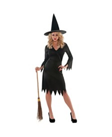 Amscan Wicked Witch Adult Women's Costume