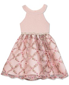 Toddler Girls Embellished Embroidered Dress