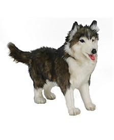 Husky Dog Plush Toy