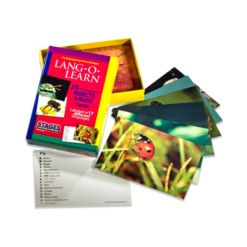 Stages Learning Materials Lang-o-Learn Esl Vocabulary Cards Flashcards, Insects Bugs