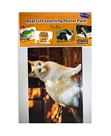 Real Photo Pets Poster Set