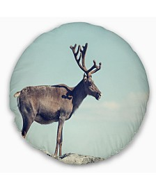 """Designart Large Reindeer in Norway Abstract Throw Pillow - 16"""" Round"""