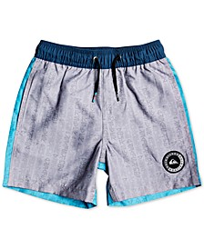 Toddler & Little Boys Colorblocked Swim Trunks
