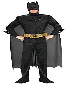 Buy Seasons Men's Batman The Dark Knight Rises Muscle Chest Deluxe Costume