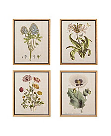 Martha Stewart Herbal Botany Set Framed Linen Canvas 4-Pc Set