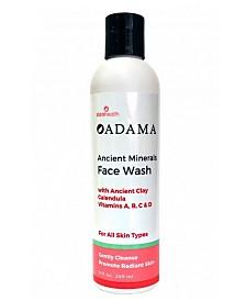 Zion Health Ancient Clay Face Wash, 8 oz