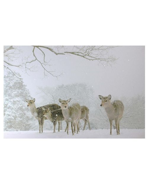"""Northlight Large Fiber Optic Lighted Winter Woods with Deer Canvas Wall Art, 15.75"""" x 23.5"""""""