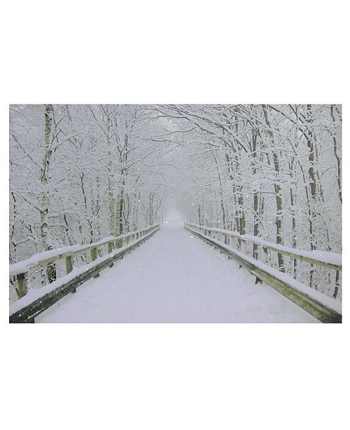 "Northlight Large Fiber Optic Lighted Winter Wooden Bridge Canvas Wall Art, 15.75"" x 23.5"""