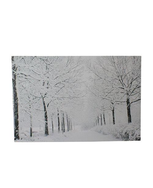 "Northlight Fiber Optic Lighted Snowfall Winter Lane Christmas Canvas Wall Art, 23.5"" x 15.75"""