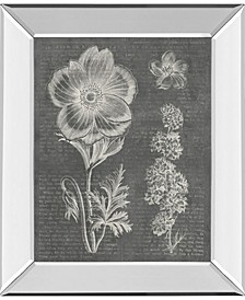 "Eden Springs 1 Gray by Wild Apple Portfolio Mirror Framed Print Wall Art - 22"" x 26"""