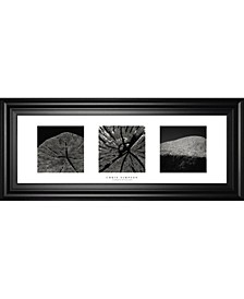 "Elements of Nature 2 by Chris Simpson Framed Print Wall Art - 18"" x 42"""