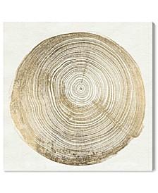 Cuore DI Legno III Canvas Art Collection