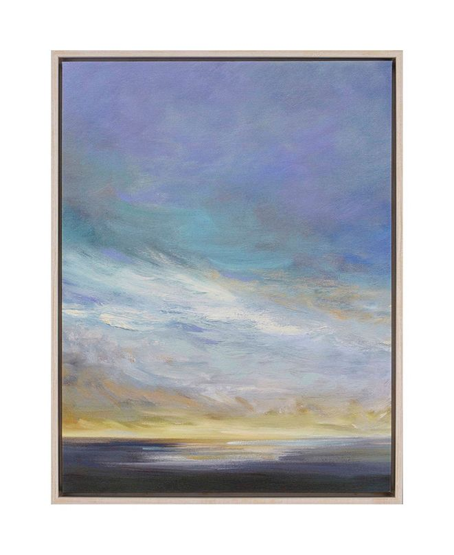 "Paragon Coastal Clouds II Framed Wall Art, 42"" x 32"""