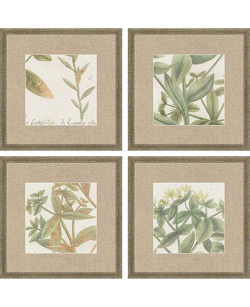"""Paragon Garden IV Framed Wall Art Set of 4, 15"""" x 15"""""""