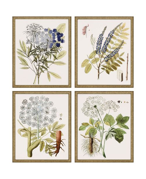 """Paragon Lacy Leaves Framed Wall Art Set of 4, 21"""" x 17"""""""