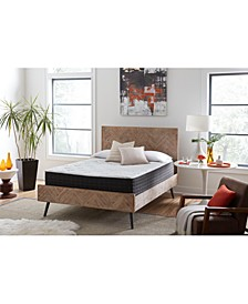 "iMattress Kaleb Hybrid Supreme 12"" Plush Mattress- Queen, Mattress in a Box"