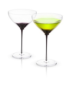 Black Swan Martini Glasses Set of 2