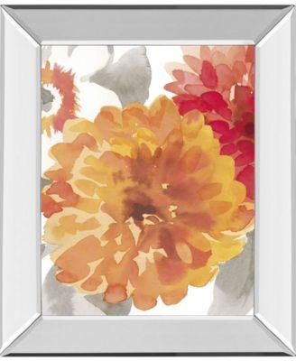 "Peach Flower II by Sandra Jacobs Mirror Framed Print Wall Art, 22"" x 26"""