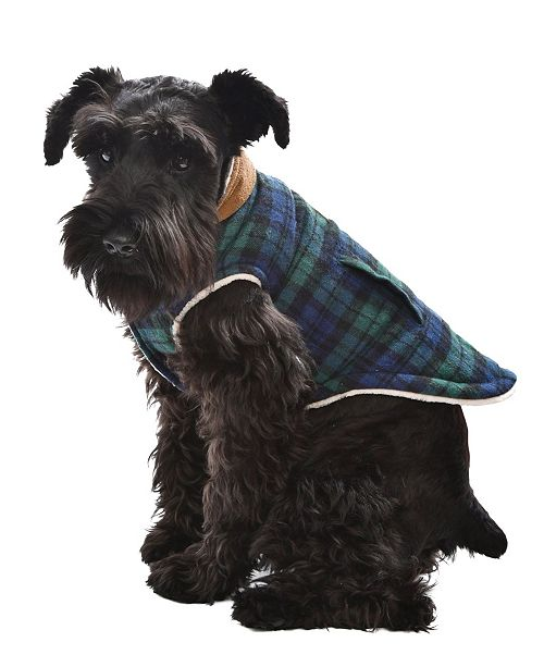 Parisian Pet Scottish Plaid Dog Jacket