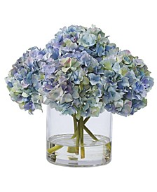 Winward International Hydrangeas in Glass