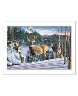 "Morning View Deer by Kim Norlien, Ready to hang Framed Print, White Frame, 20"" x 14"""