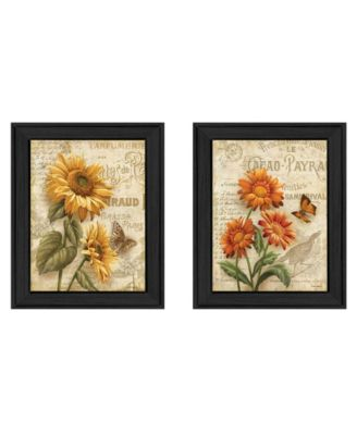 Flowers Collection By Ed Wargo, Printed Wall Art, Ready to hang, Black Frame, 14
