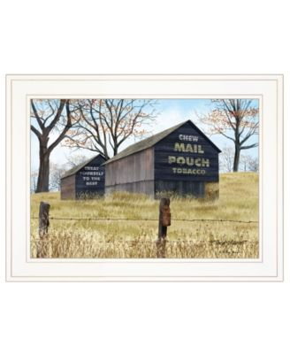 """Treat Yourself Mail Pouch Barn by Billy Jacobs, Ready to hang Framed Print, White Frame, 19"""" x 15"""""""