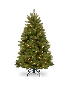 4.5 ft. Newberry® Spruce Tree with Clear Lights