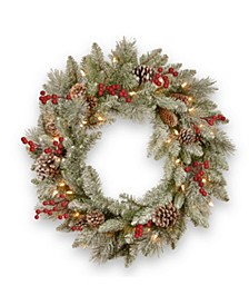 24in. Snowy Bristle Berry Wreath with Battery Operated LED Lights